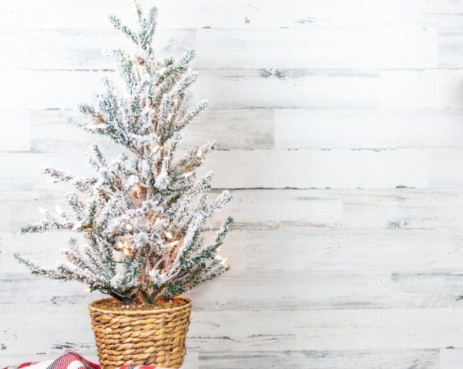 Flocked Christmas tree against white shiplap