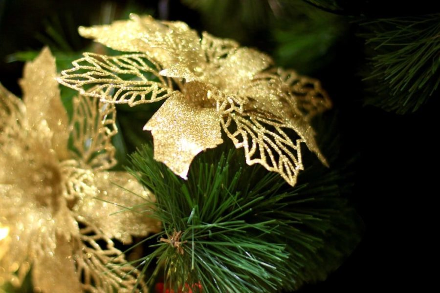 gold poinsettia elegant decorations tree