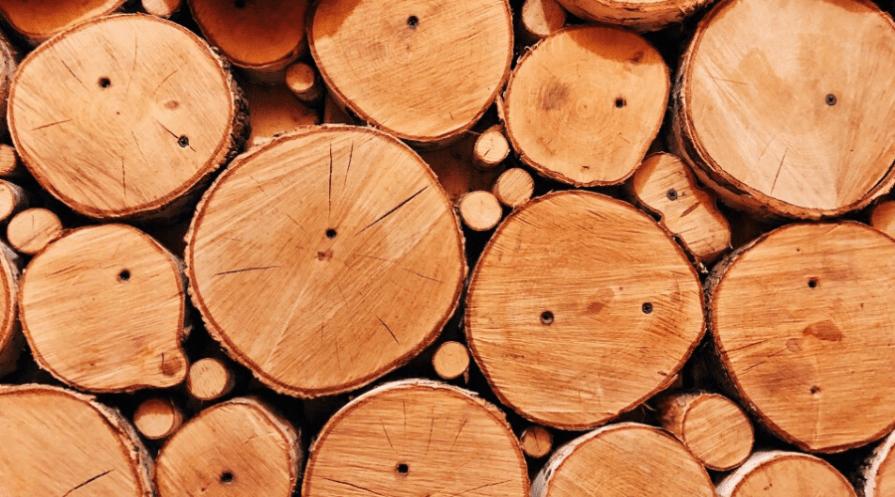 oak firewood seasining shot from cut end in stack many size logs