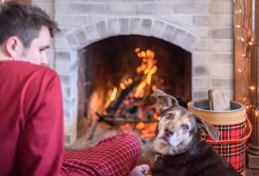 Sitting by fireplace with dog indoors wood fire