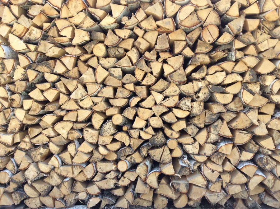 birch firewood seasoning outdoors