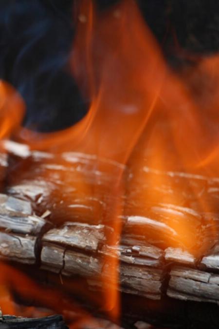 closeup birch firewood bonfire burning birchwood log