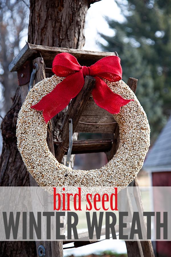 Bird Seed Winter Wreath DIY Tutorial