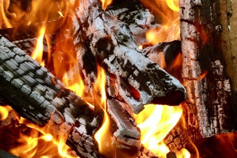 burning firewood with orange flames