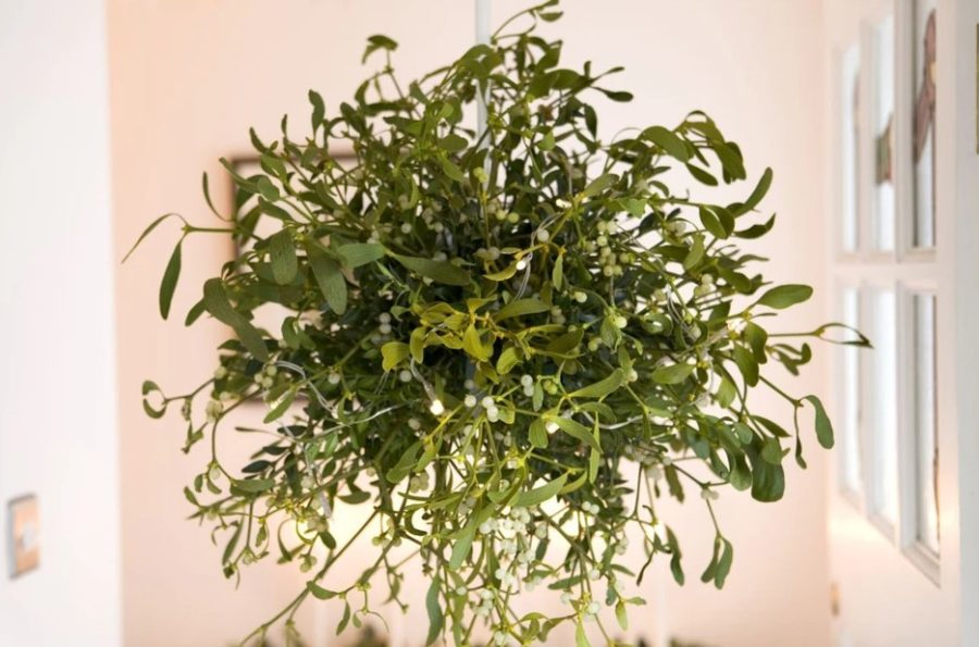 mistletoe and box Christmas ball diy tutorial