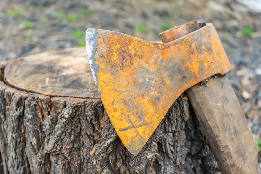 an old ax leaned against a tree stump