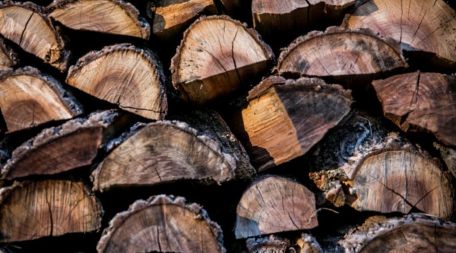 walnut split logs end on closeup firewood walnut