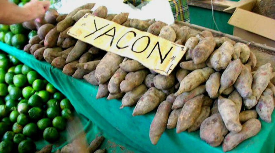 yacon recipes featured wide