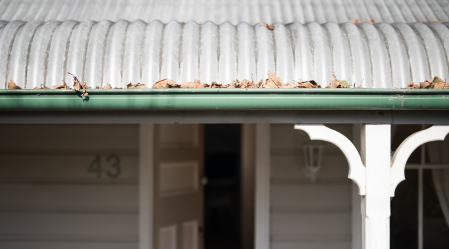 a corrugated metal roof with gutter no gutter guard