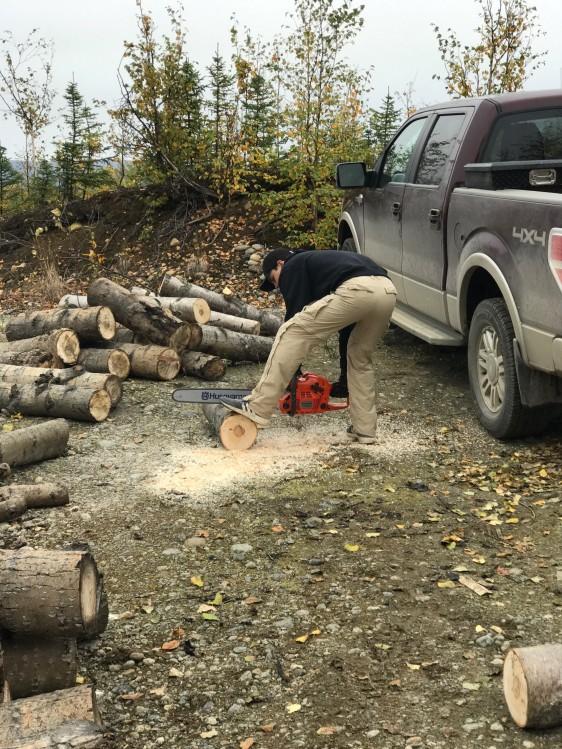 wood, cabin, firewood, cutting, alaska, houston, ford, chainsaw, f150, cottonwood
