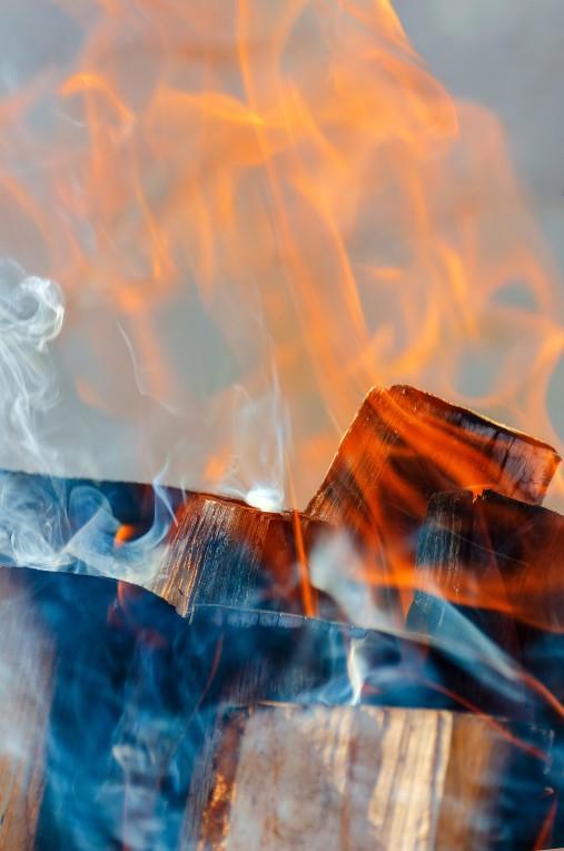 cottonwood firewoood closeup burning cotton wood
