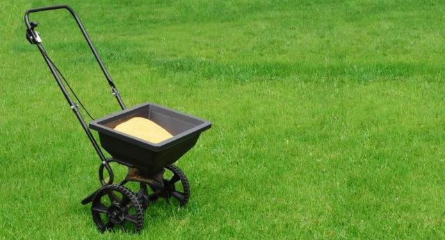 A cart filled with fertilizer standing on a bright green lawn.