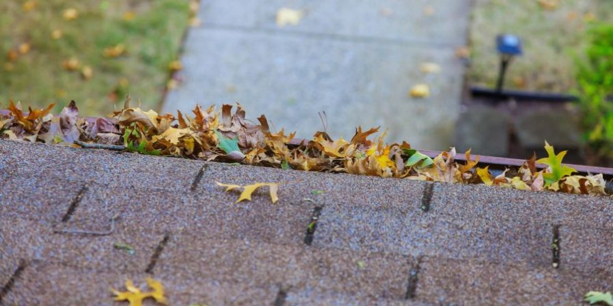 Gutter filled with leaves