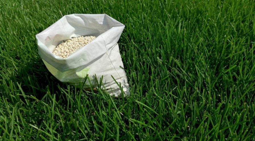 A white bag with lawn fertilizer pellets standing on lush green grass.