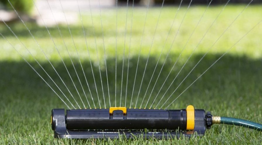 Oscillating sprinkler connected to a garden hose ejecting water on a green lawn.