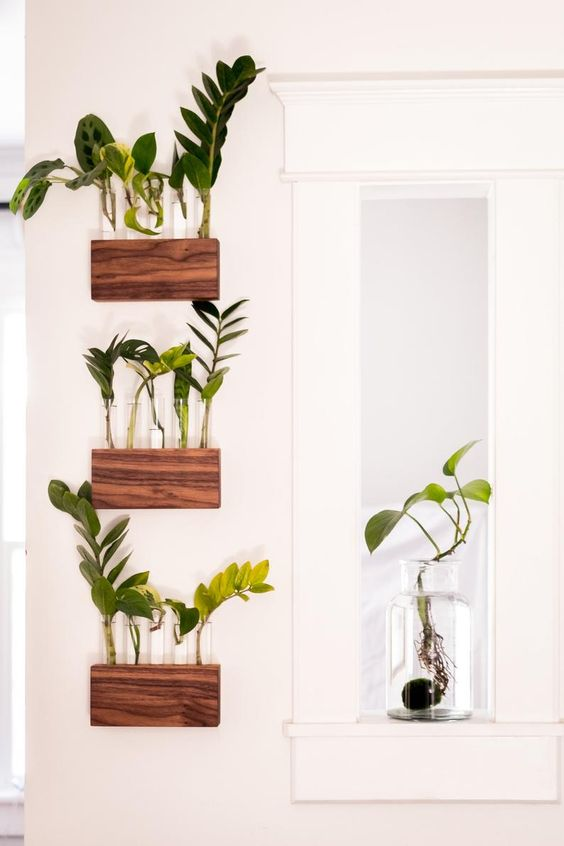A Wall-hanging that doubles up as a Plant Display
