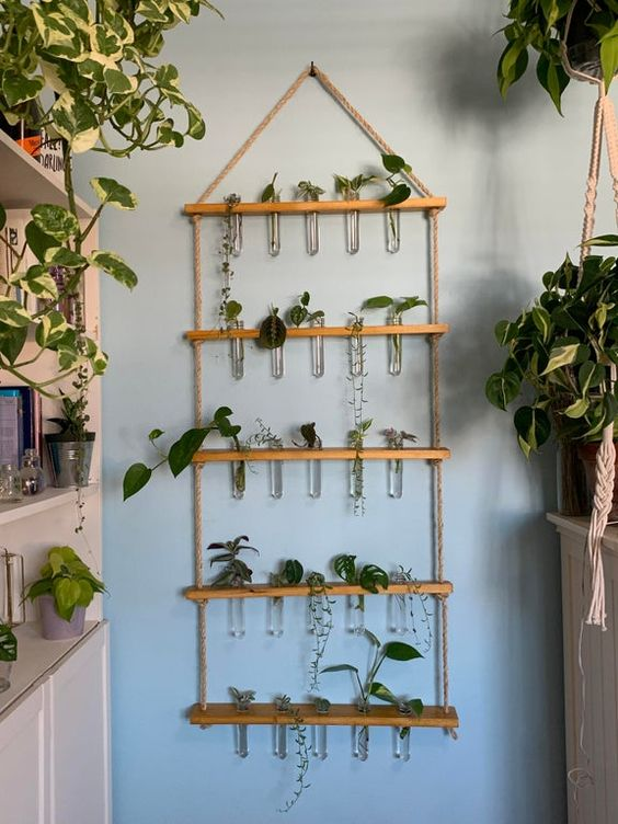 Wall Hanging With Plant Filled Glass Tubes