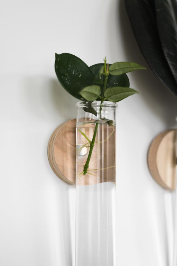DIY test tube propagation station
