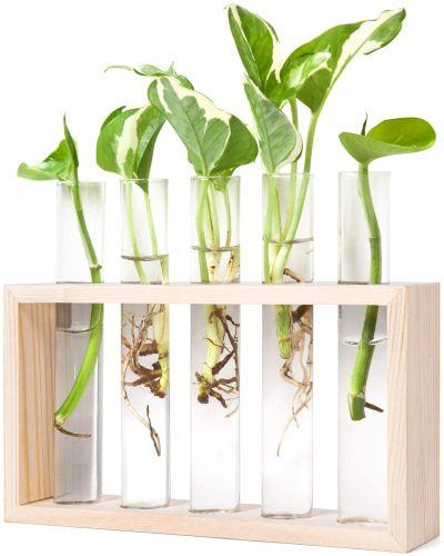 Mkono Wall Hanging Glass Planter Plant Terrarium