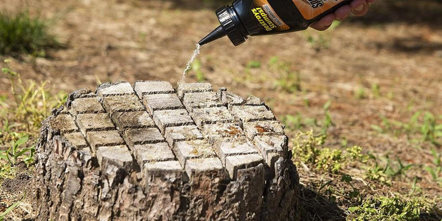 Someone applying Spetracide, one of the best tree stump killers in our list, to a tree stump.