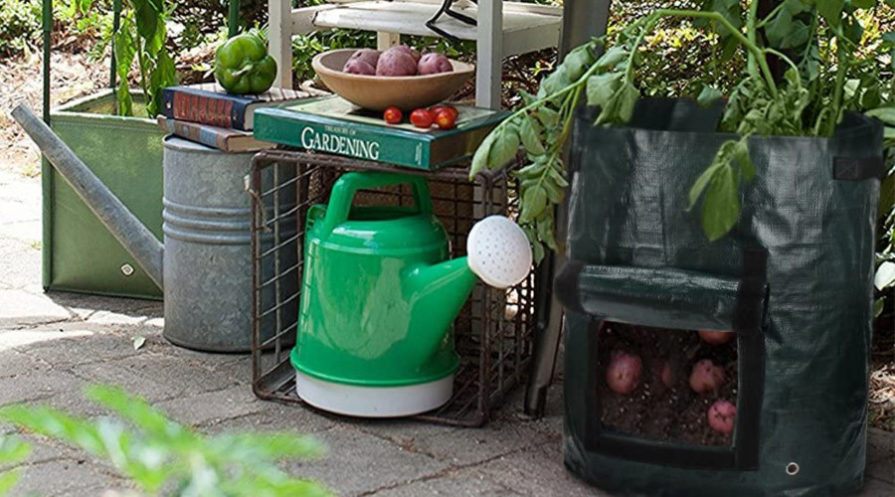 Grow bags standing on a terrace next to a bright green watering can.