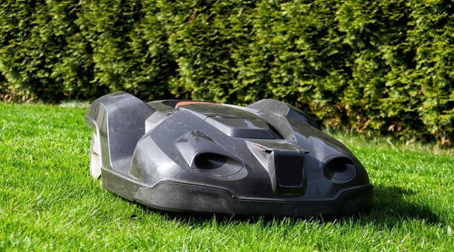 A robot mower cutting grass with a hedge row in the background.