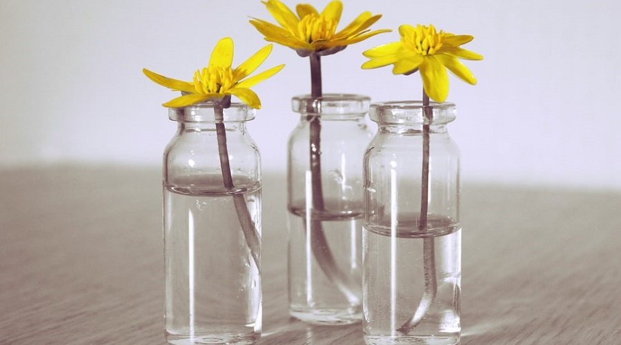clear jars with yellow flower cuttings