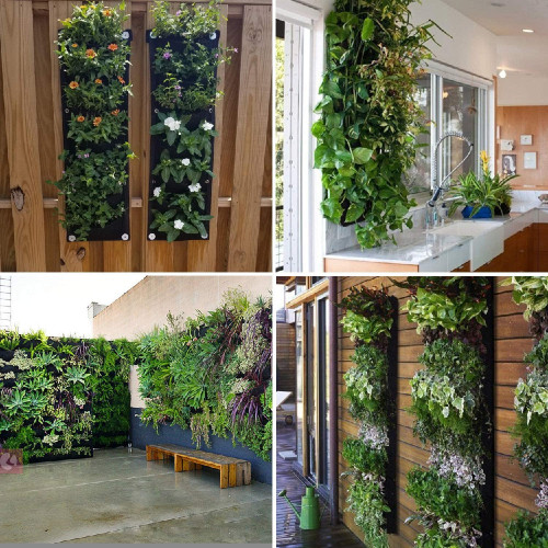 four images of pocket planter on walls and fences