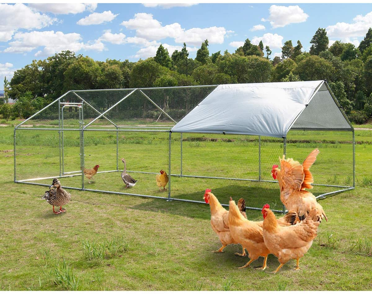 Polar Aurora Walk-in Poultry Cage - The Best Walk-In Chicken Coops for Your Flock