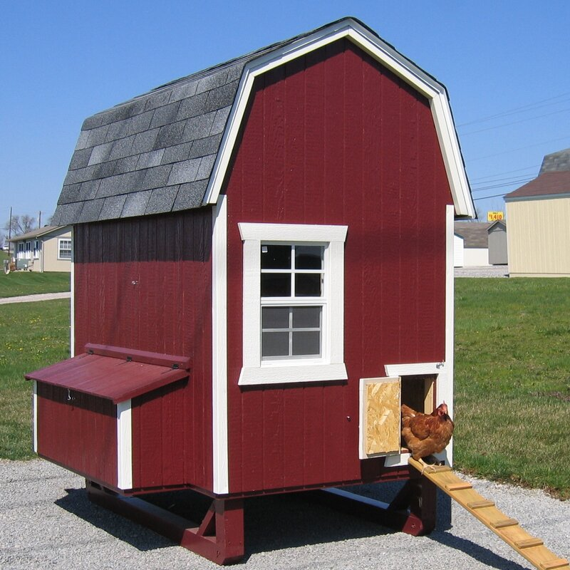 Daria Gambrel Barn Chicken House with Nesting Box and Ramp - The Best Walk-In Chicken Coops for Your Flock