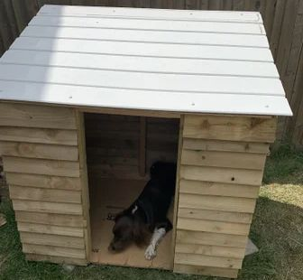 DIY Dog Wooden Kennel