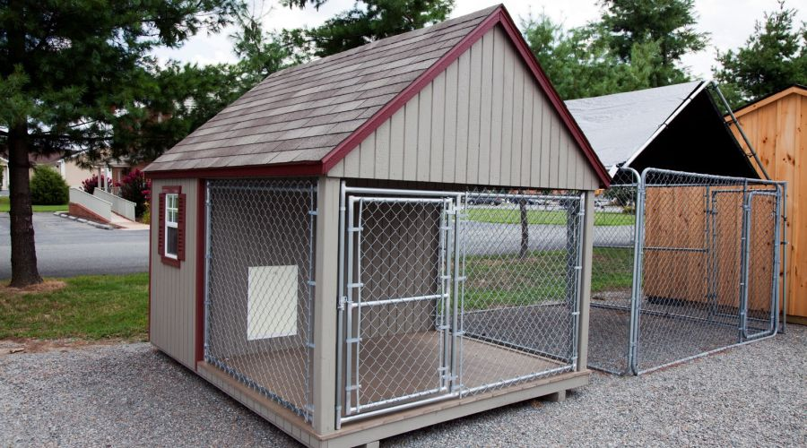 Dog House Kennel standing on a gravel driveaway.