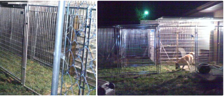 Two photos of the inescapable dog walk, connected to a building, with one dog inside on the right photo.