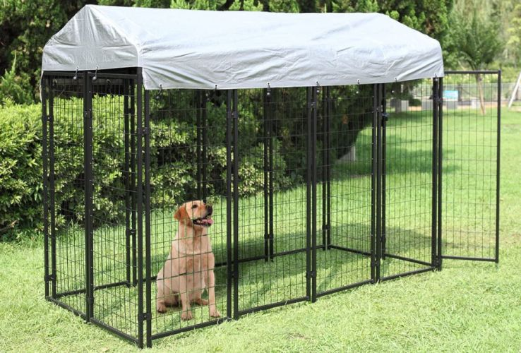 Dog sitting in a JAXPETY Large Dog Uptown Welded Wire Kennel that stands on green grass.