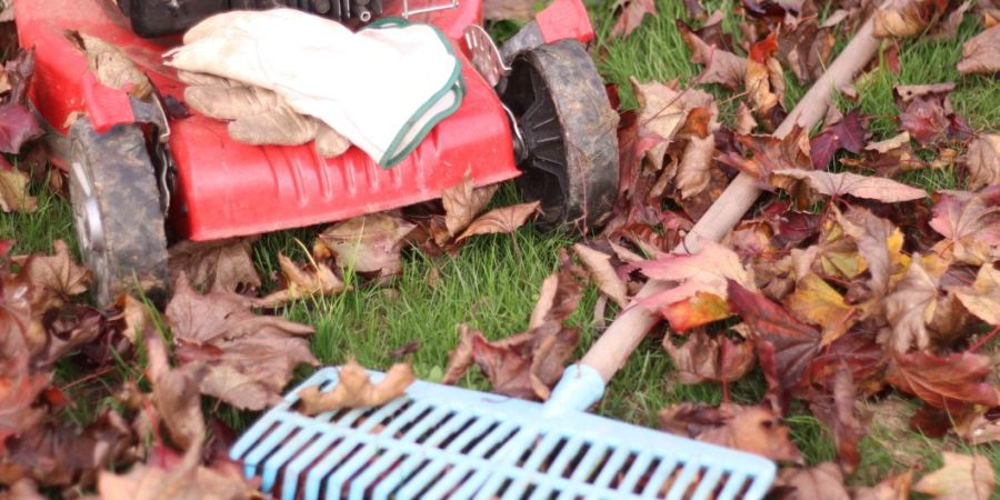 A lawn sweeper standing next to a rake lying on a lawn covered in leaves.
