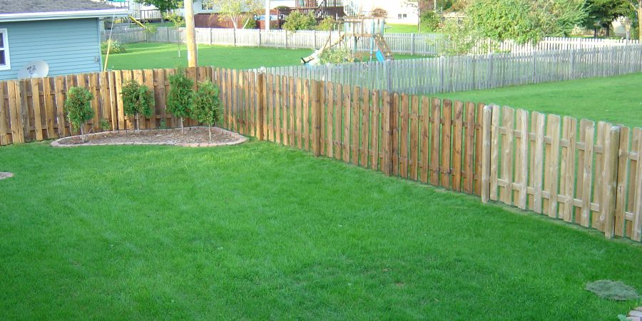A partially power-washed and partially stained backyard fence.
