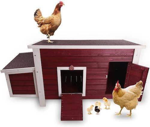 Petsfit Outdoor Chicken Coop