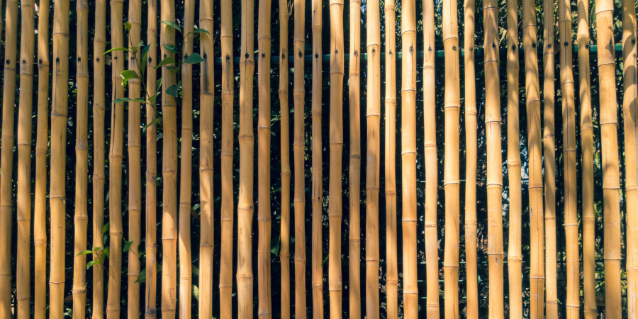 close up of bamboo fence