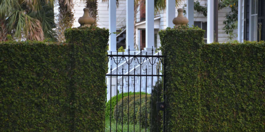 metal gate between two ivy colored posts of large fence