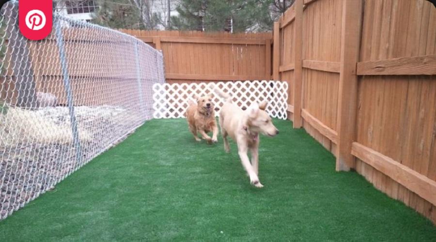 Play Area Dog Fence