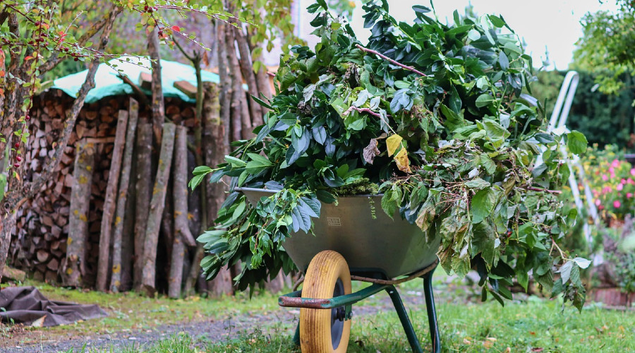 Wheelbarrow filled with leaves and twigs