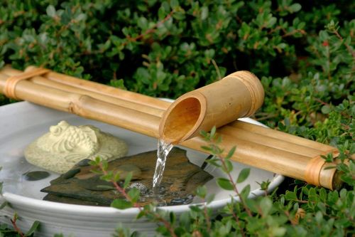 Bamboo water fountain with a green shrub in the background.