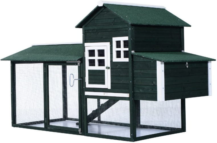 Black coop with white trim and modest run