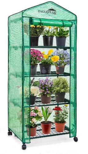 Eagle Peak Mini Greenhouse with Casters