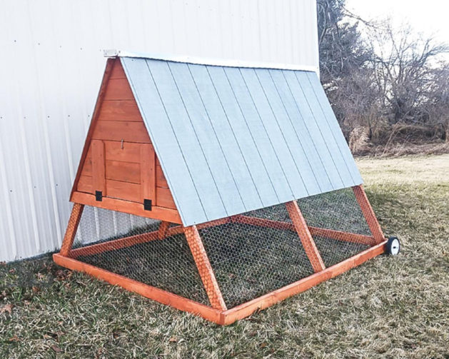 A-frame chicken coop on wheels
