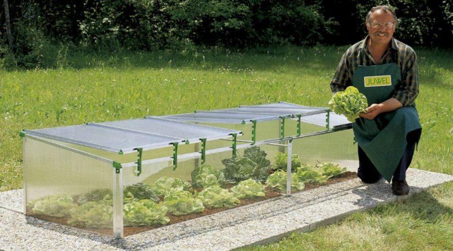 Gardener kneeling next to an open Exaco BioStar cold frame with lettuce growing inside.