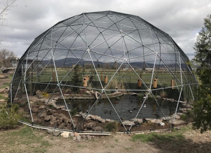 geodome aviary over duck pond