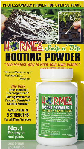 Bottle of rooting hormone on yellow background with wordage about product