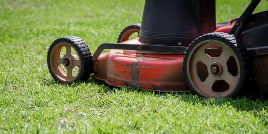 Lawn Mower Mowing