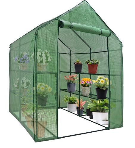 Nova Mini Walk-In Greenhouse